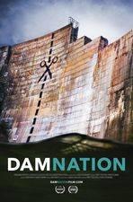 Filmposter DamNation