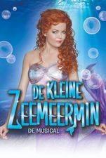 De Kleine Zeemeermin (NL)