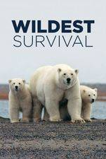 Wildest Survival