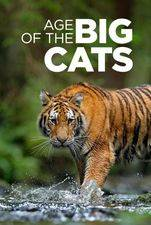 Age Of The Big Cats